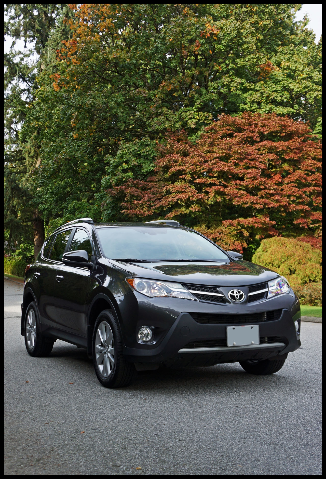 If you were looking for something new in the 2015 Toyota RAV4 don t hold your breath any longer Being that the newest version