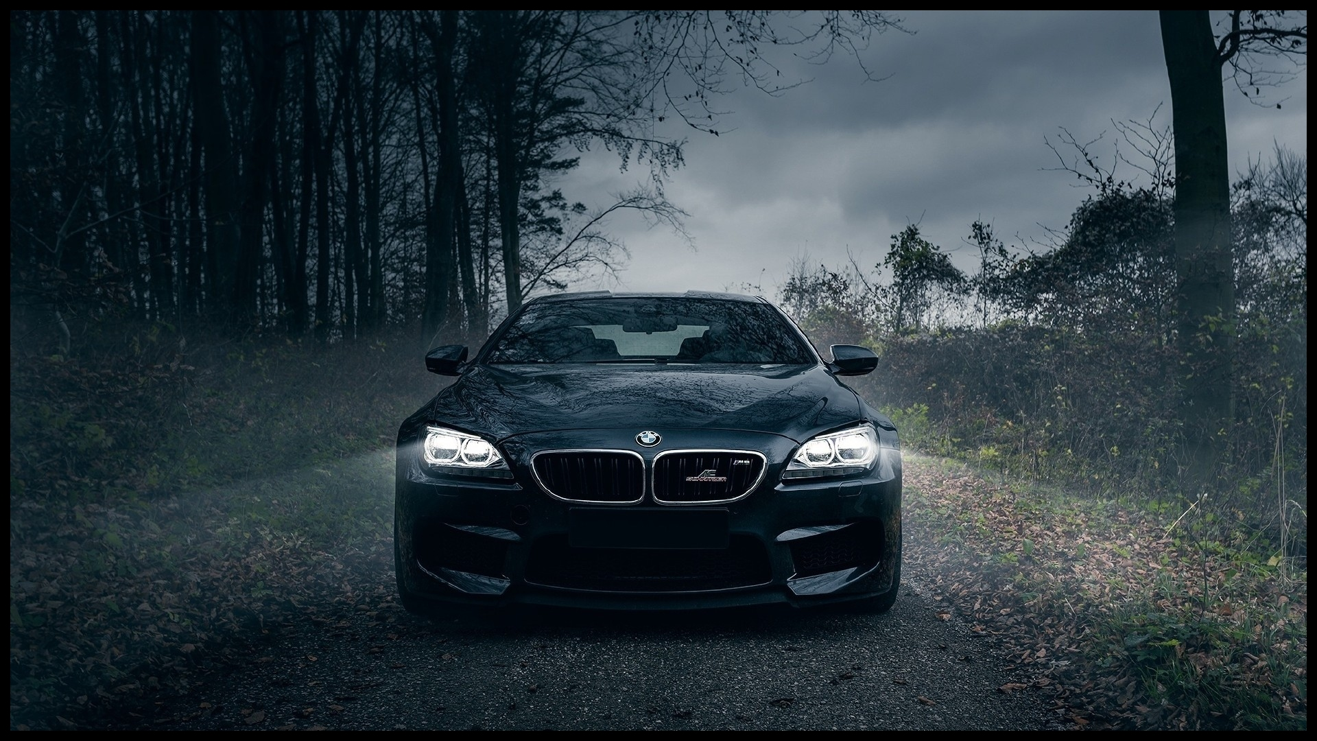 BMW vehicles feature brand BMW Service Houston
