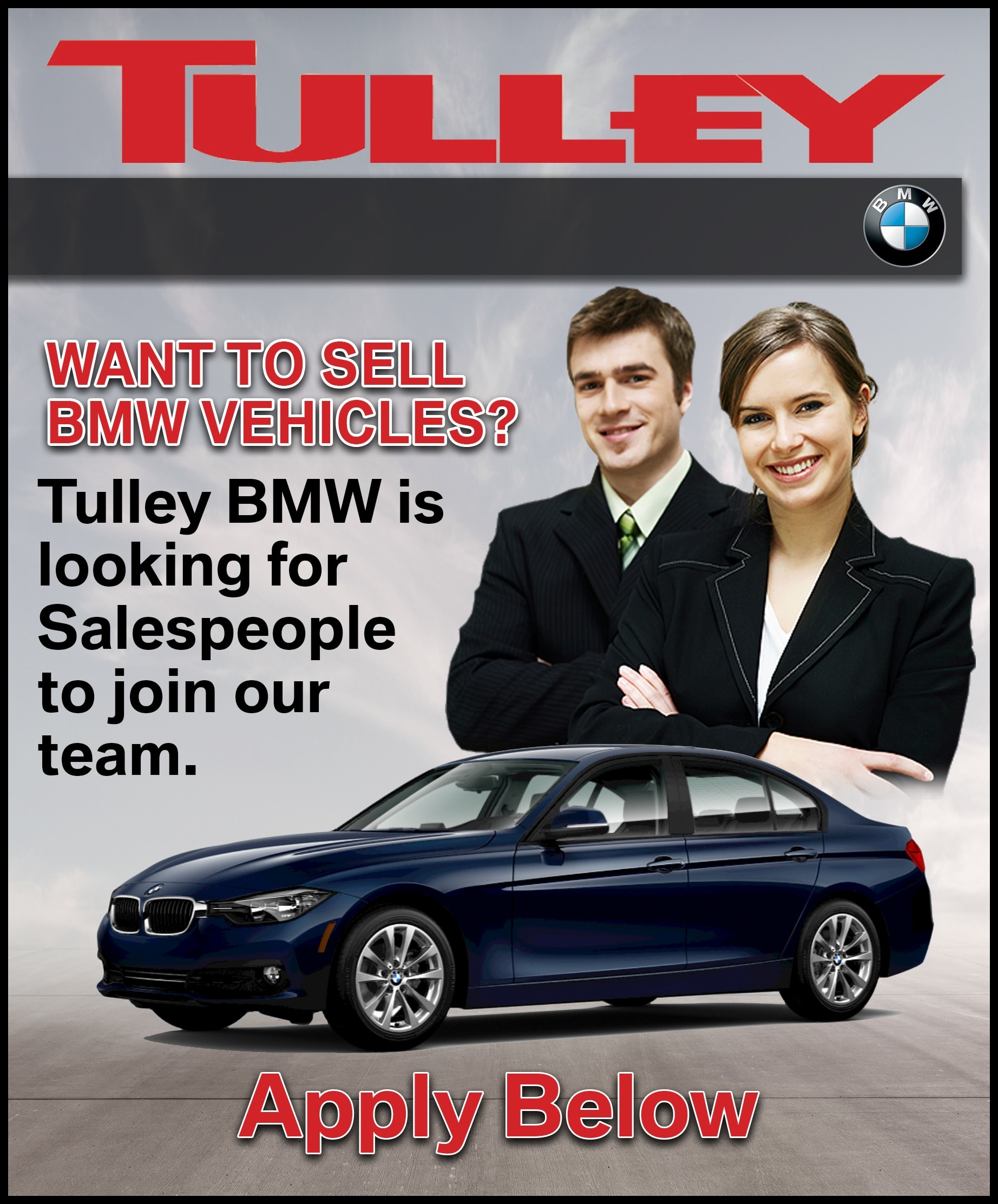 BMW Sales Advisor